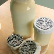 Guernsey milk & fresh cheeses